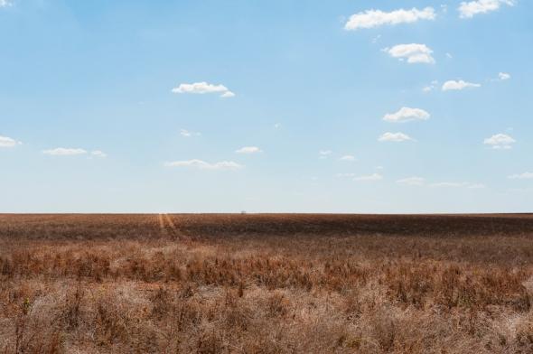 S.A, wheatbelt
