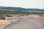 150827-3854-roadtrip