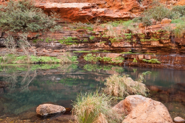 I waited for the nude swimmer to leave, Circular Pool, Karijini