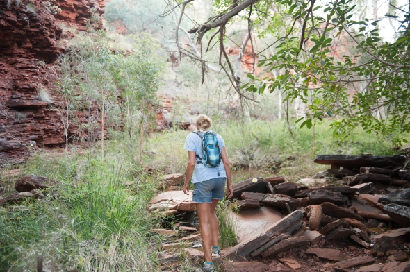 A walking bottle of bug deterrent. Karijini National Park.