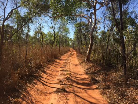 The road to Goombaragin, Cape Leveque Peninsula