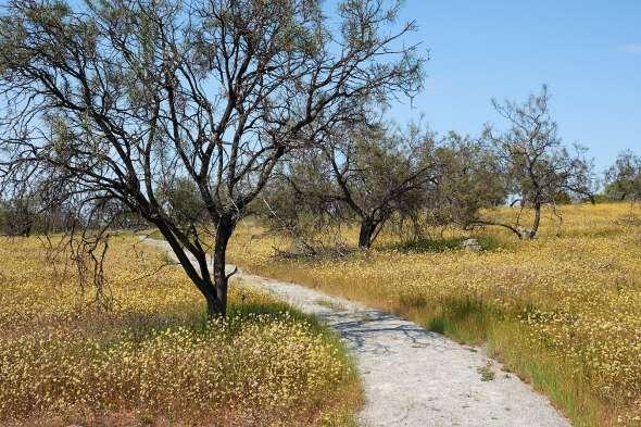 18-10-03-Roadtrip-362
